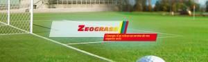 zeograss_m